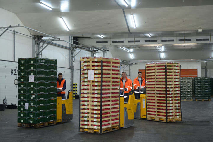 Pfalzmarkt refrigerated warehouse