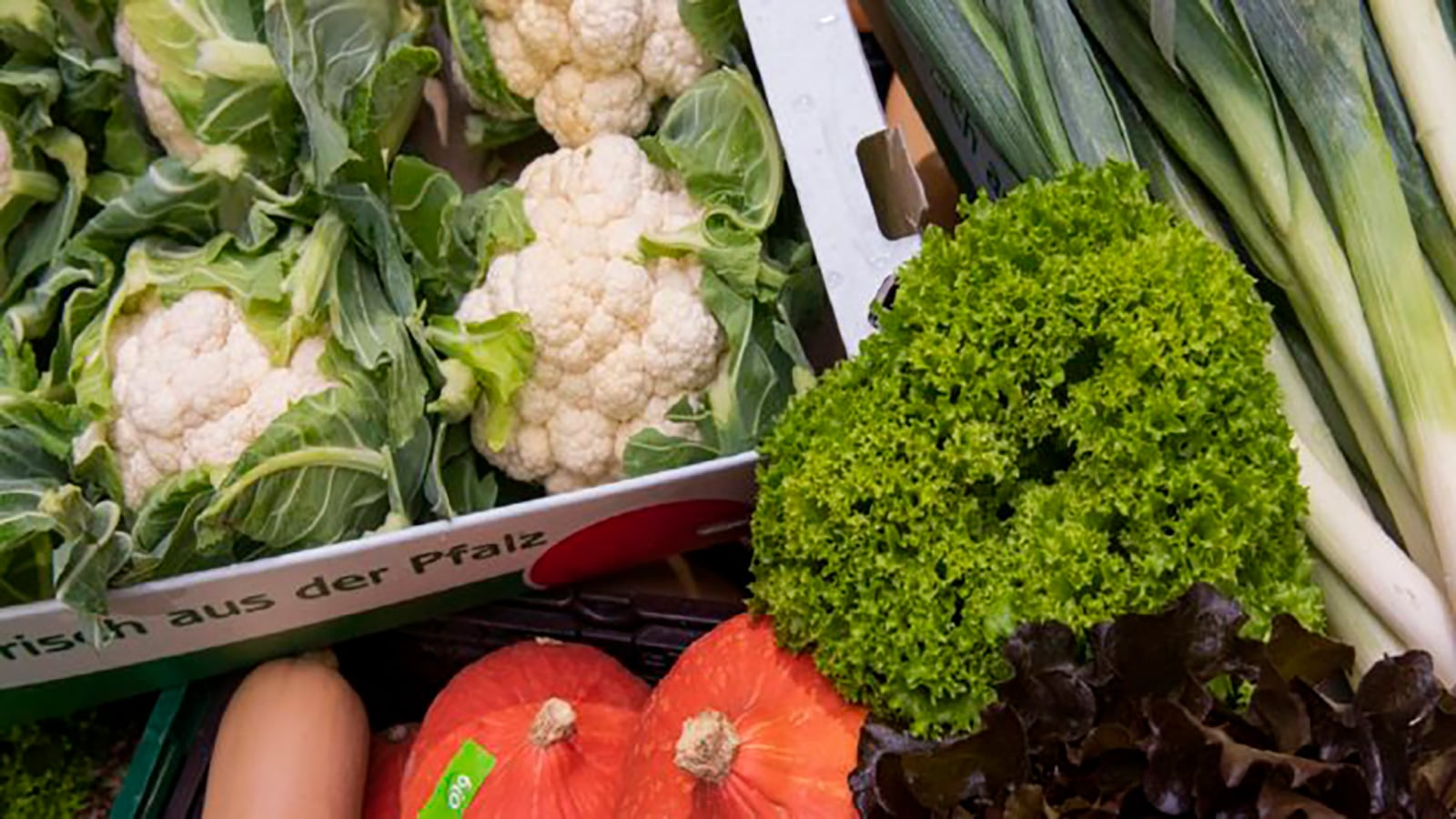 Pfalzmarkt Start Frischgemüse Saison 2018