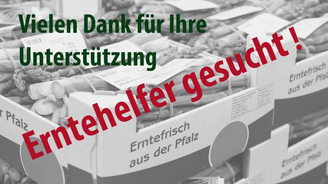 Pfalzmarkt Erntehelfer gesucht