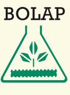 Partner BOLAP