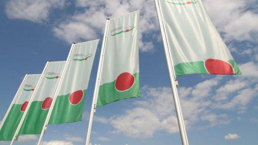 Pfalzmarkt Flaggen