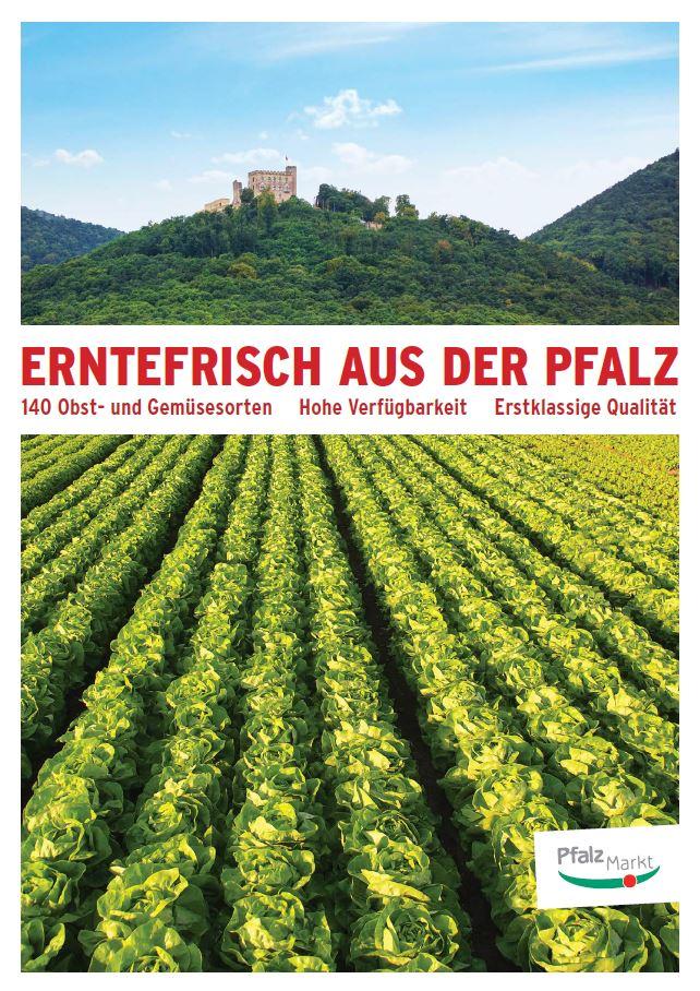 Pfalzmarkt Informationsbroschüre