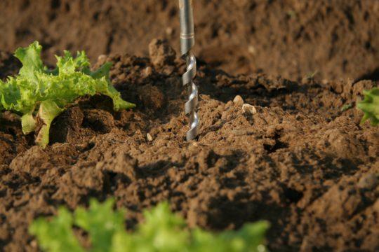 Pfalzmarkt Quality Soil sample