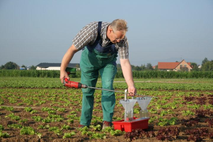 Pfalzmarkt Qualität Bodenprobe