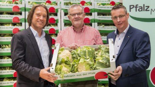Pfalzmarkt Saisonfazit und Geschäftsausblick