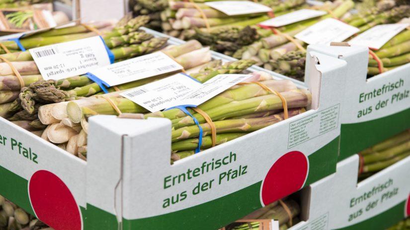 Pfalzmarkt Saisonfazit Spargel