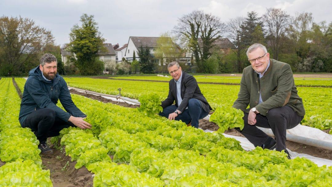 Pfalzmarkt Geschäftsführung Start Frischgemüse Saison 2021