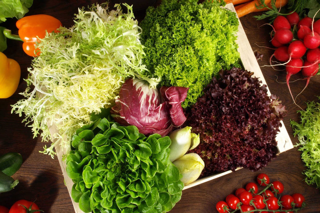 Bunte Salate mit gebratenem Hähnchenbrustfilet